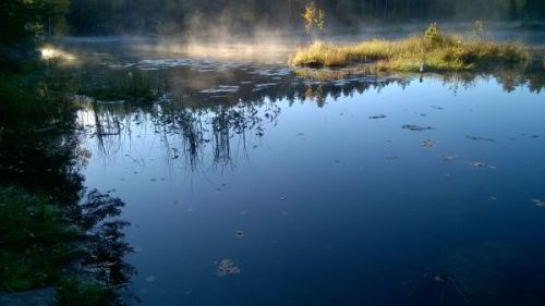 Mustalampi pond in Nuuksio