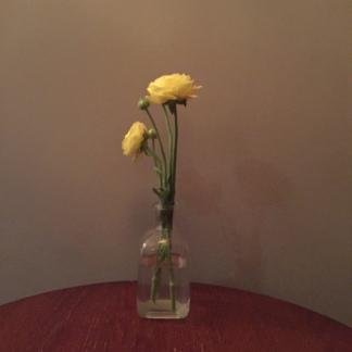 Flower in Kamp