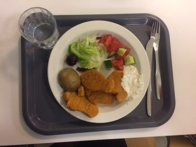 An example of a Finnish school meal. Picture by Elli.