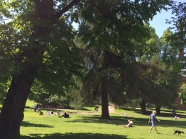 Park locals love in Helsinki